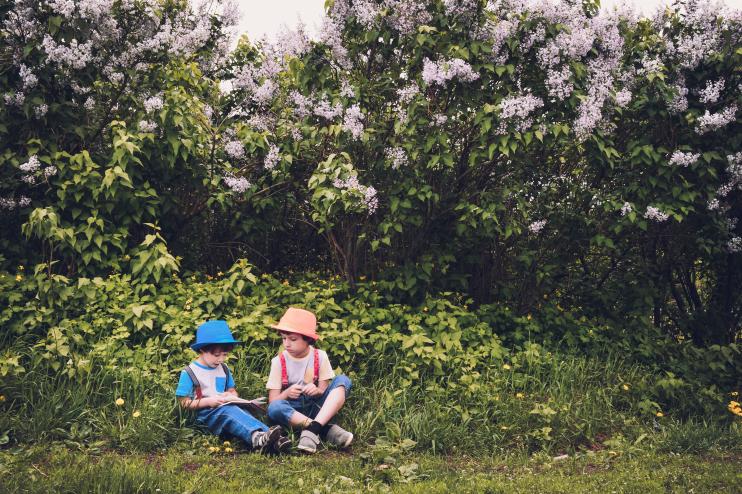 Consciência ecológica na infância: formas de desenvolvê-la